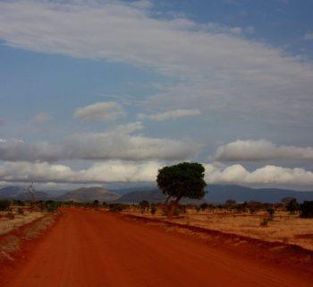 Safari in Kenya. Parchi e natura per un'avventura mozzafiato