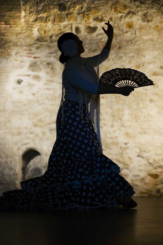 flamenco-1046485_1280