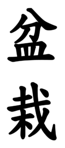 ideogramma-bonsai-dfkaib