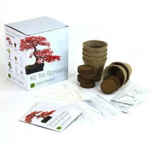 kit-bonsai-2