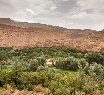 Marocco: Alto Atlante e Deserto